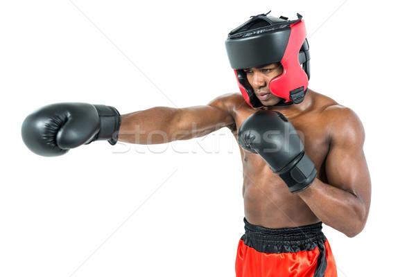 Boxeador posição branco boxe masculino Foto stock © wavebreak_media