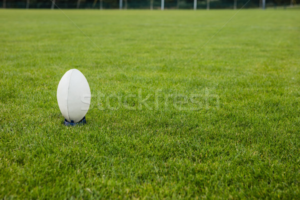 Ballon de rugby parc herbe monde Photo stock © wavebreak_media