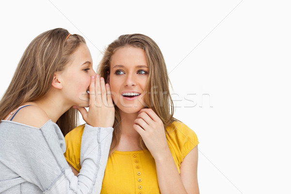 Blonde student whispering to her beautiful friend against white background Stock photo © wavebreak_media