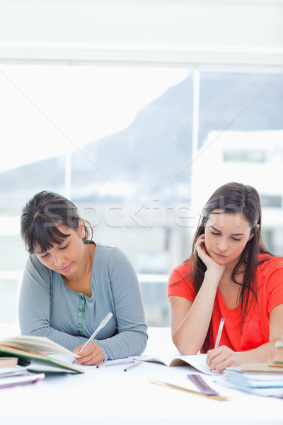 две женщины изучения глядя книгах сидят таблице Сток-фото © wavebreak_media