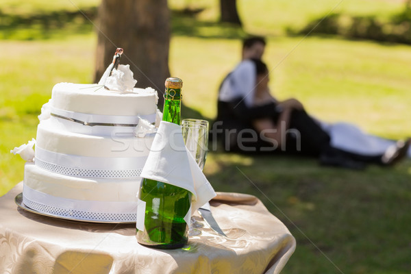 Wedding cake and champagne with couple relaxing at park Stock photo © wavebreak_media
