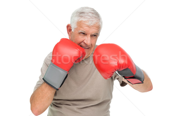 Close-up portrait of a determined senior boxer Stock photo © wavebreak_media