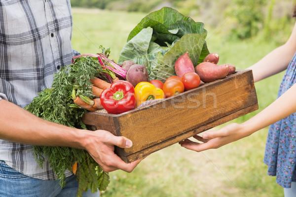 Stock photo: Farmer giving box of veg to customer