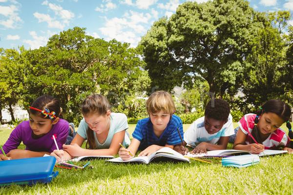 Dzieci praca domowa parku portret książki charakter Zdjęcia stock © wavebreak_media