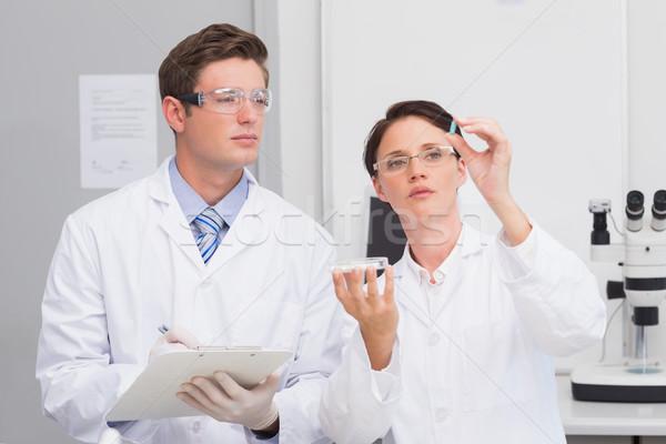 Foto d'archivio: Scienziati · guardando · pillola · laboratorio · donna · medici