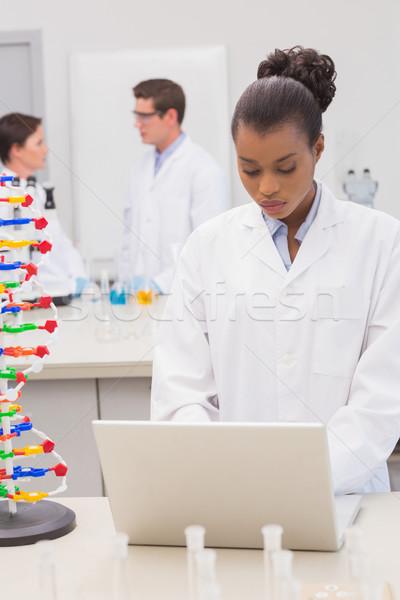 Naukowiec za pomocą laptopa koledzy mówić wraz laboratorium Zdjęcia stock © wavebreak_media