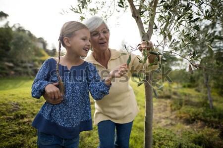 少女 デジタル タブレット 森林 幸せ ストックフォト © wavebreak_media