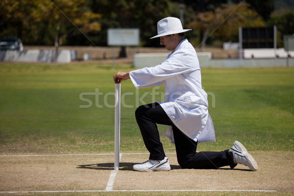 Full length of umpire putting bails on stumps Stock photo © wavebreak_media