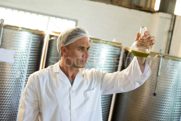 техник оливкового масла машина завода бизнеса Сток-фото © wavebreak_media