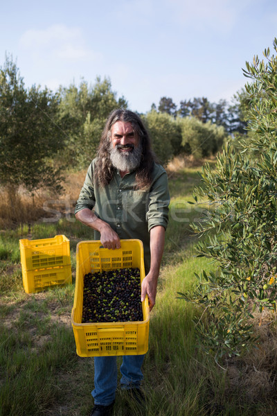 Portrait of happy couple holding harvested olives in crate Stock photo © wavebreak_media
