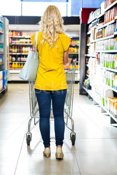 Vista posteriore donna spingendo business shopping Foto d'archivio © wavebreak_media