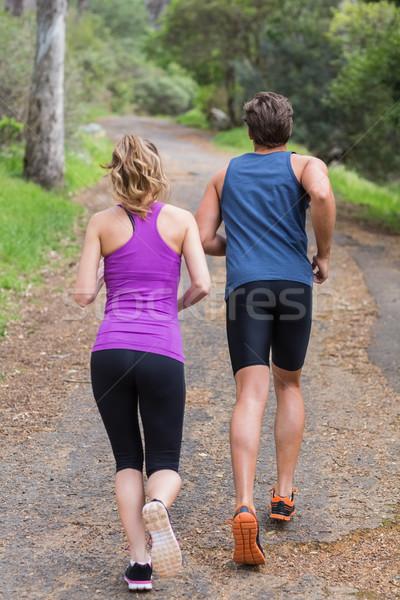 Hátsó nézet pár jogging út teljes alakos erdő Stock fotó © wavebreak_media