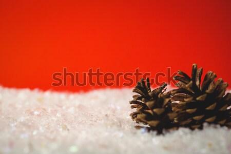 Deux pin cône neige Noël temps Photo stock © wavebreak_media