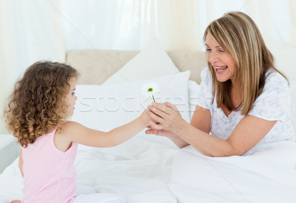 Little girl offering a gift to her grandmother at home Stock photo © wavebreak_media