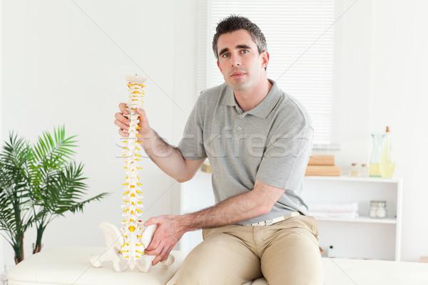 Chiropractor model omurga oda ofis Stok fotoğraf © wavebreak_media