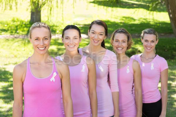 Mosolyog nők rózsaszín mellrák tudatosság napos idő Stock fotó © wavebreak_media