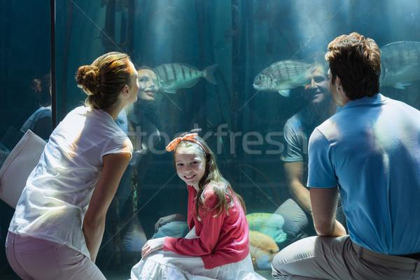 Família olhando peixe tanque aquário homem Foto stock © wavebreak_media