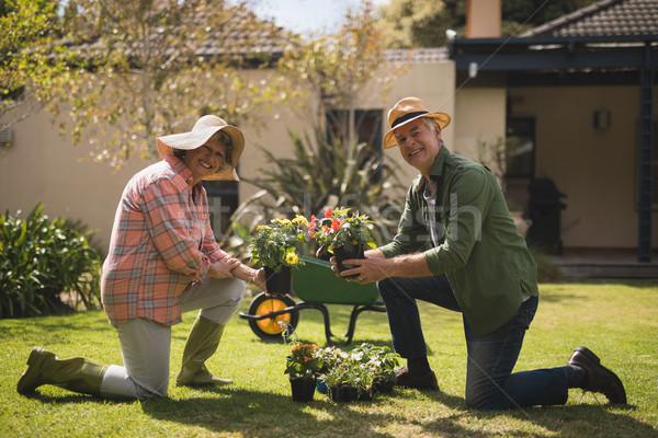 Portré mosolyog idős pár tart növények térdel Stock fotó © wavebreak_media