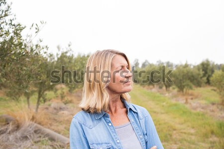 Thoughtful woman standing in olive field Stock photo © wavebreak_media
