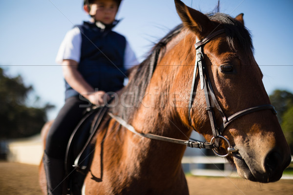 Nino equitación caballo rancho feliz Foto stock © wavebreak_media