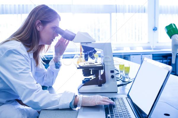 Wetenschapper werken microscoop laboratorium universiteit vrouw Stockfoto © wavebreak_media