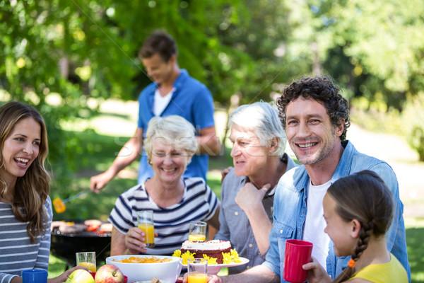Család barátok piknik barbecue park nő Stock fotó © wavebreak_media