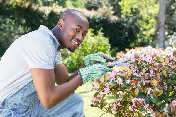 Young man cutting flowers Stock photo © wavebreak_media