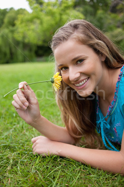 Young smiling woman smelling a yellow flower while lying down in the countryside Stock photo © wavebreak_media