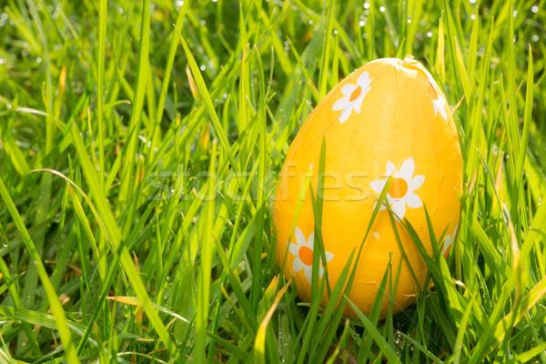 оранжевый пасхальное яйцо трава Пасху саду шоколадом Сток-фото © wavebreak_media