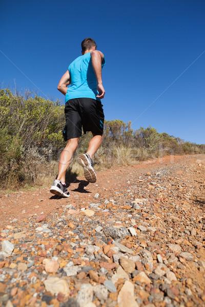 спортивный человека бег вверх стране тропе Сток-фото © wavebreak_media