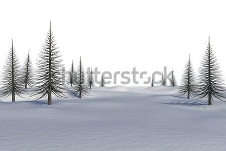 Blanco paisaje muertos árboles forestales Foto stock © wavebreak_media