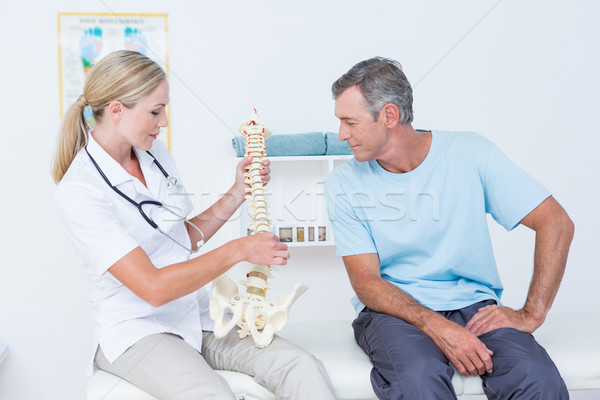 Doctor showing anatomical spine to her patient  Stock photo © wavebreak_media