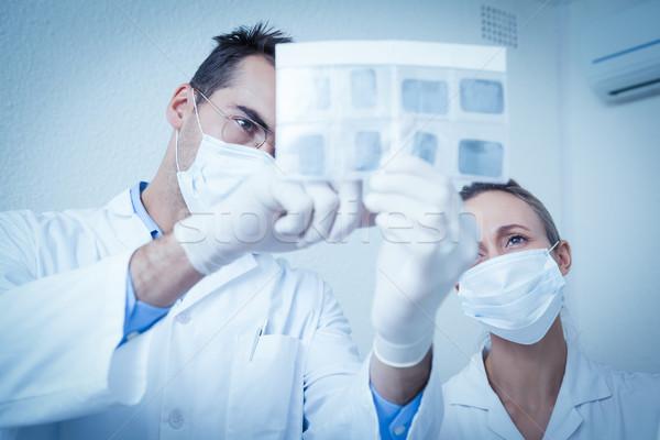 Стоматологи глядя Xray концентрированный два женщину Сток-фото © wavebreak_media