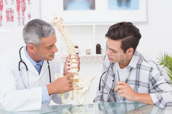 Médico anatómico espina paciente médicos Foto stock © wavebreak_media