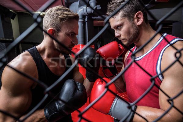 Kettő határozott férfiak box mögött oldalnézet Stock fotó © wavebreak_media