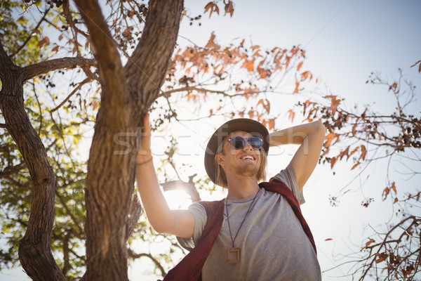 Low angle view of smiling man standing on tree Stock photo © wavebreak_media