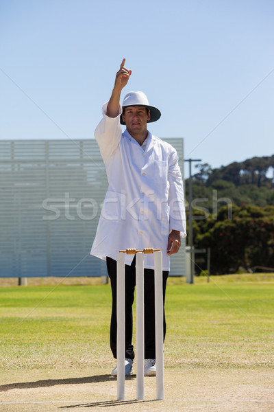 Cricket umpire signalling out during match Stock photo © wavebreak_media
