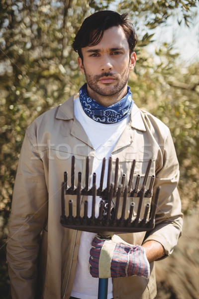 Serious young man with rake standing at olive farm Stock photo © wavebreak_media