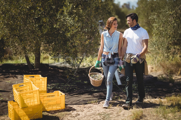 Happy couple carrying olives in basket at farm on sunny day Stock photo © wavebreak_media