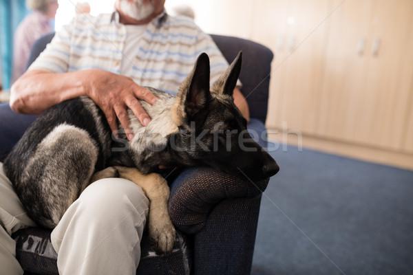 Senior man vergadering puppy fauteuil bejaardentehuis Stockfoto © wavebreak_media