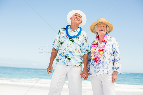 Senior couple holding hands on the beach Stock photo © wavebreak_media