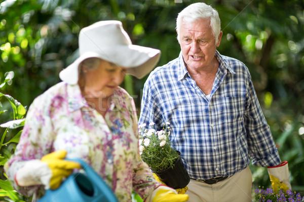 Senior man praten vrouw tuin lopen Stockfoto © wavebreak_media