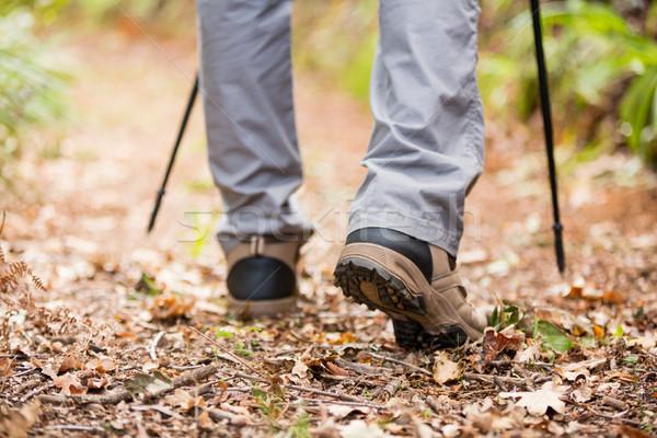 Erkek uzun yürüyüşe çıkan kimse yürüyüş yürüyüş kutup orman Stok fotoğraf © wavebreak_media