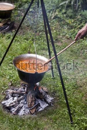 Cozinhar natureza cogumelo sopa comida Foto stock © wellphoto