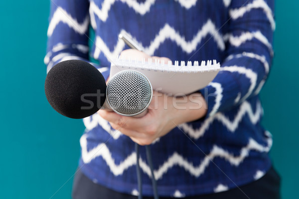 Journalist. News conference. Public relations - PR. Stock photo © wellphoto