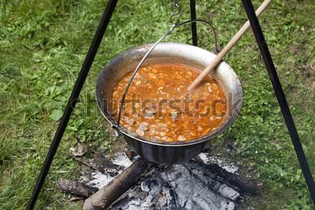 Fogueira cogumelo sopa comida verde Foto stock © wellphoto