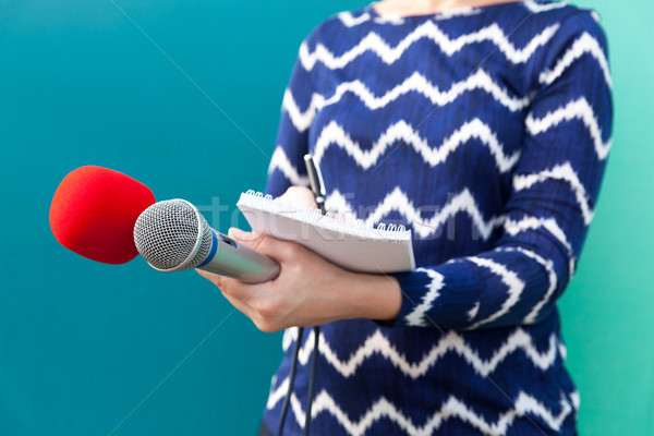 Stock photo: News conference. Female journalist.