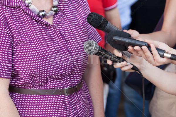 Medya görüşme haber konferans kadın Stok fotoğraf © wellphoto