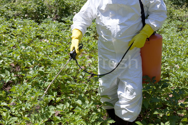 Jeans tóxico vegetal jardim comida químico Foto stock © wellphoto