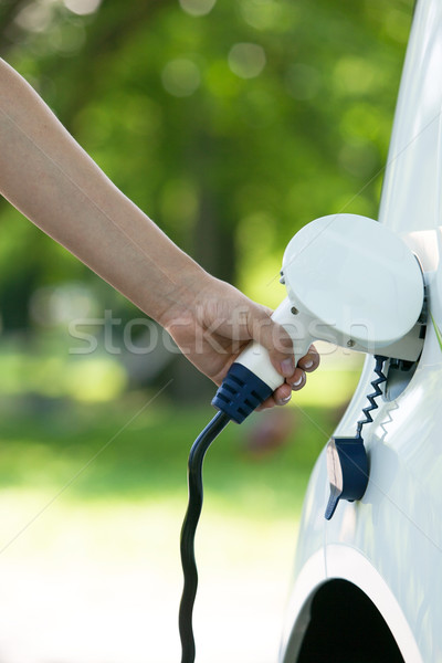 Elektrische auto batterij auto natuur technologie industrie Stockfoto © wellphoto